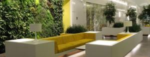 Озеленение интерьеров
